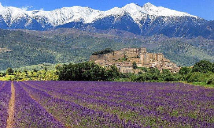 provenza1